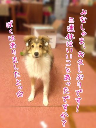 fc2blog_20140324192116ace.jpg