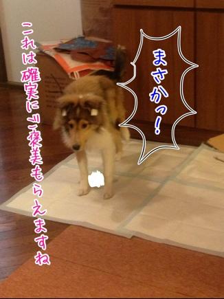 fc2blog_201403281945184e5.jpg