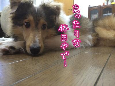 fc2blog_201405082257513ae.jpg