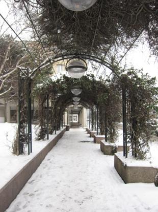 Villa Savoye-18