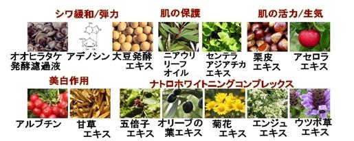 【アイソイ】グリーンキャビア ダークニングゼロ&アンチリンクルアイパッチ