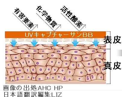【AHC】UVキャプチャーサンBB