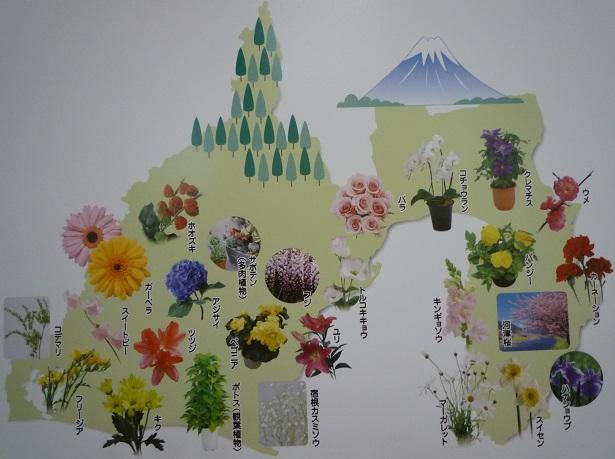 静岡の花の一部