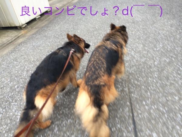 fc2blog_20140625193703ad0.jpg