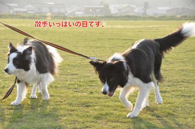 20140614yu-san1.jpg