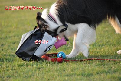 20140614yu-san7.jpg