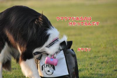 20140614yu-san8.jpg