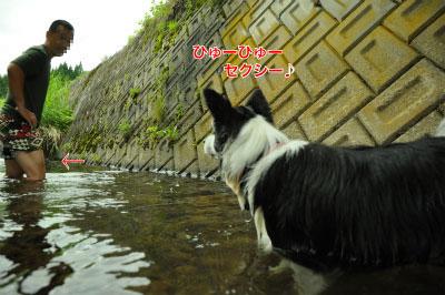 20140706kawa04.jpg