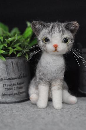シマシマ猫さん201403130029(1)