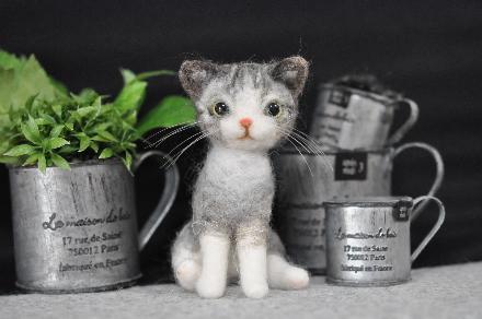 シマシマ猫さん201403130036(1)