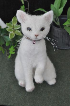 白猫201407080001(1)