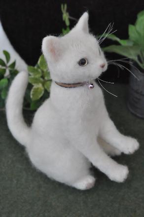 白猫201407080003(1)