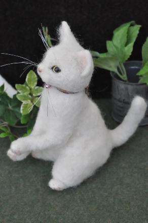 白猫201407080006(1)