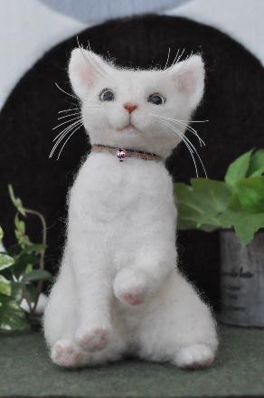 白猫201407080009(1)