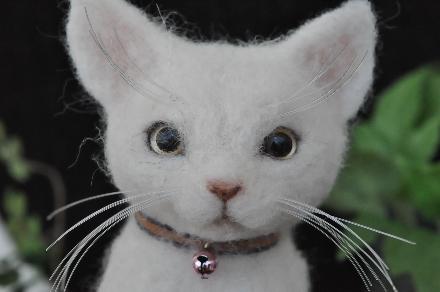 白猫201407080010(1)