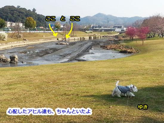 20140328_153704.jpg