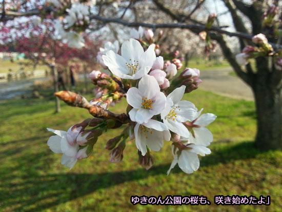 20140328_154017.jpg