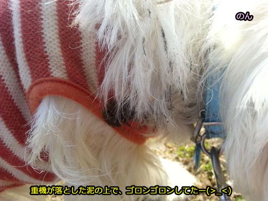 20140328_154508.jpg