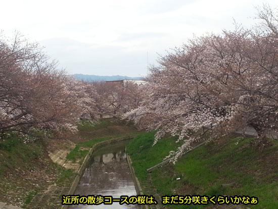 20140329_162329.jpg