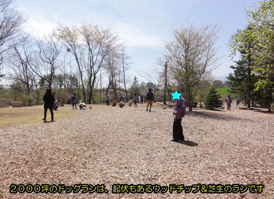 DSC07538.jpg