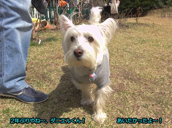DSC07592_201405082013089a2.jpg