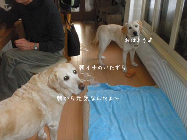 asa_201402272119022aa.jpg
