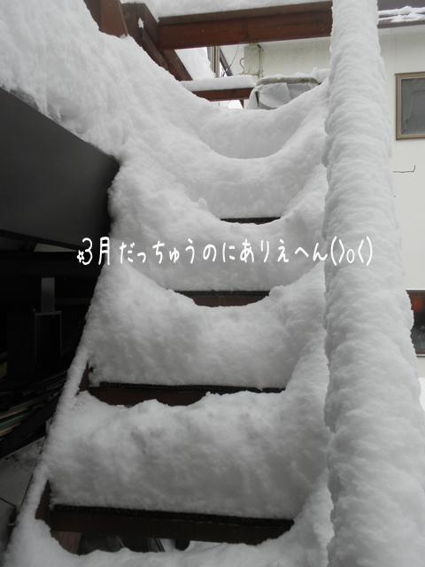 barukaidan_20140312203724b6e.jpg