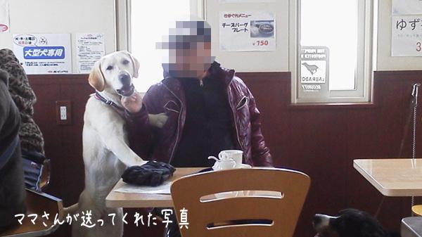 cafe_2014030323103242f.jpg