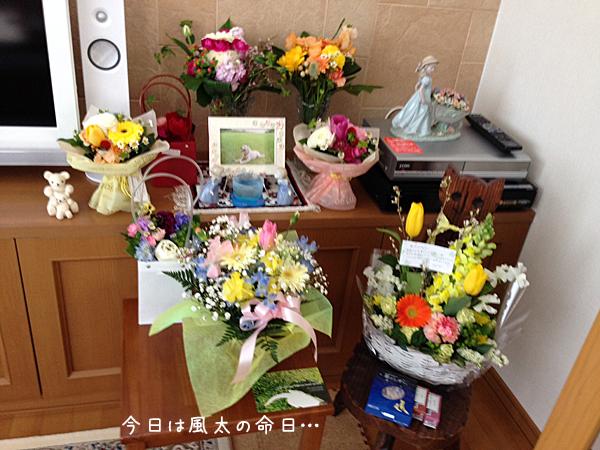 fuuta_20140319205922bcc.jpg