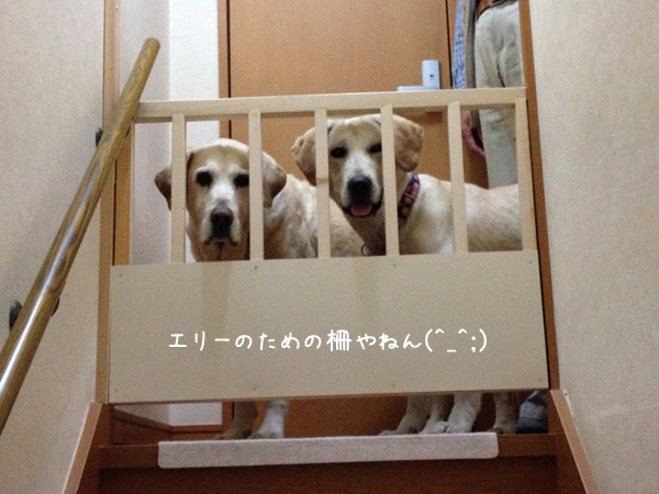 kaidan_201403032318326ef.jpg