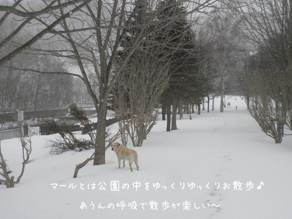 kouen_20140405234812ec2.jpg