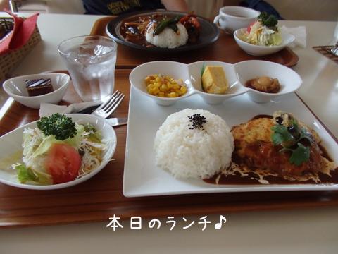 lunch_20140620201400803.jpg