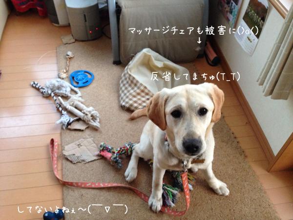 omotyabakokowasu.jpg
