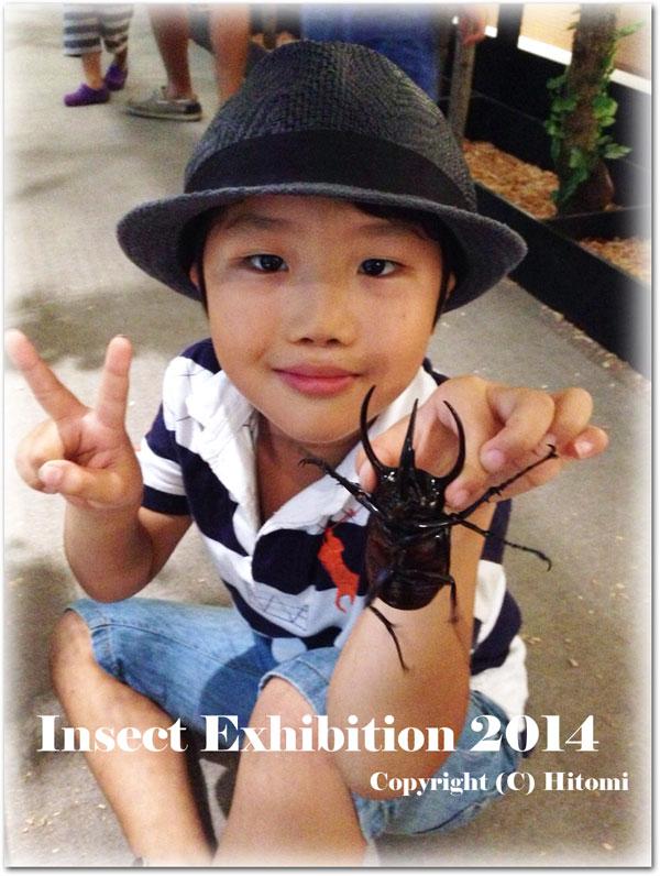 昆虫大好き!