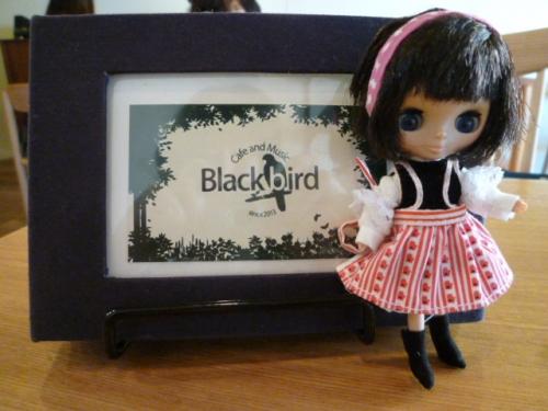 Blackbirdさん♪