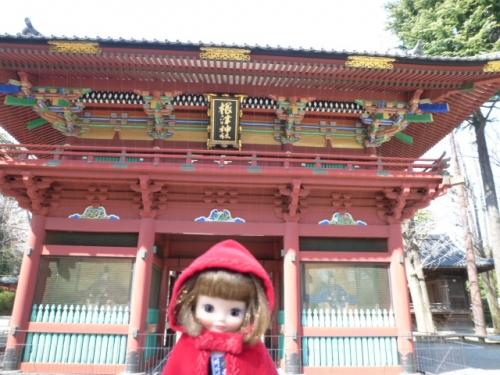 根津神社♪