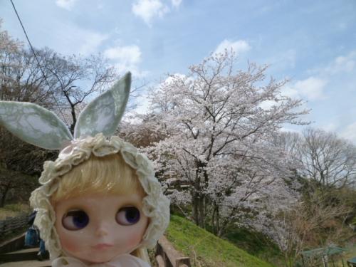 あけぼの山公園♪