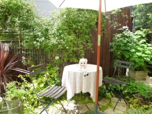 yuna*さんのお庭♪