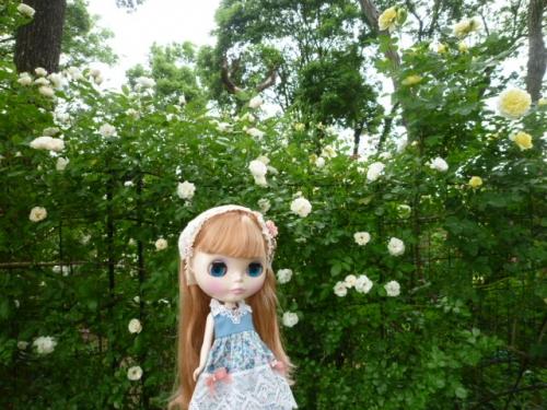 The Natural Gardens of Sakano♪