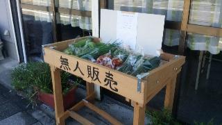 高橋の野菜♡