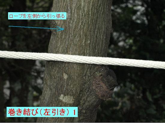 巻き結び(左引き) 1