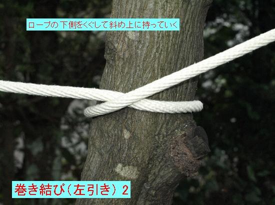 巻き結び(左引き) 2