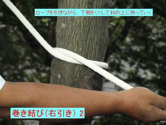 巻き結び(右引き) 2