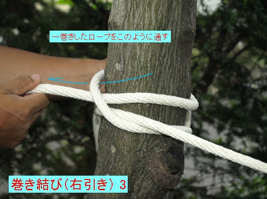 巻き結び(右引き) 3