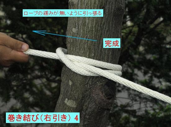 巻き結び(右引き) 4