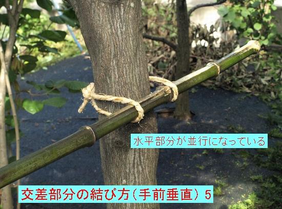 交差部分の結び方(手前垂直)5