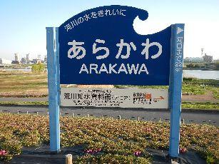 通勤路 桜4-1 (6)