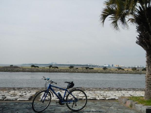 サイクリング3-29 (5)