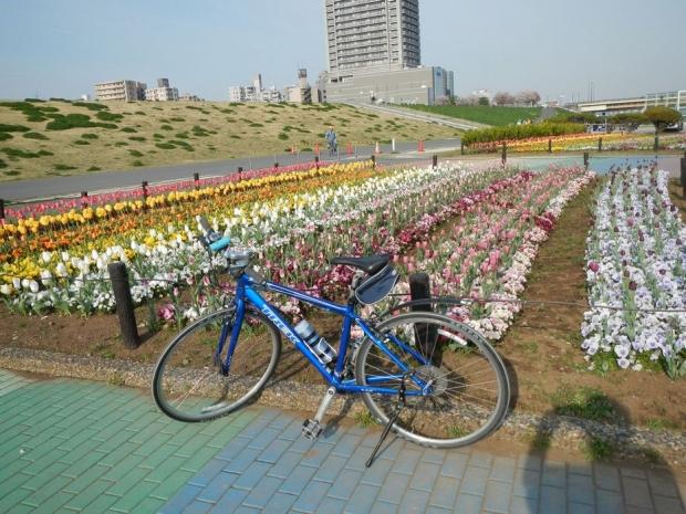 サイクリング4-13 (1)