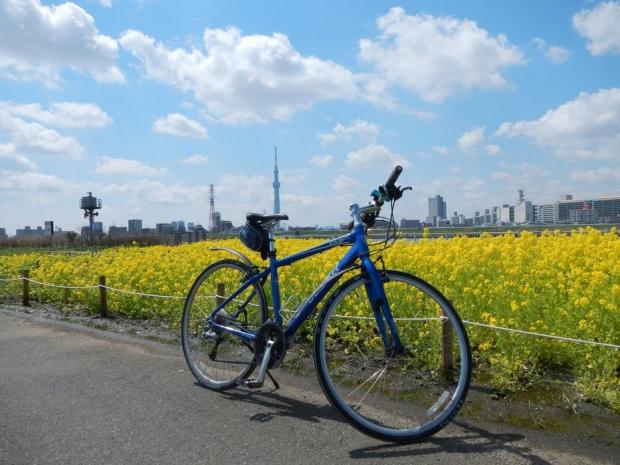 サイクリング4-6 (1)